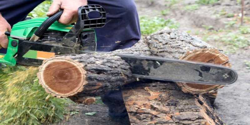 how to cut wood slices with chainsaw