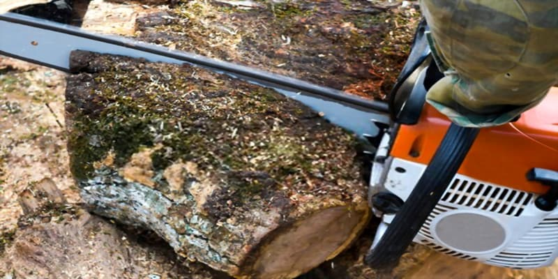 are chainsaw bars interchangeable?