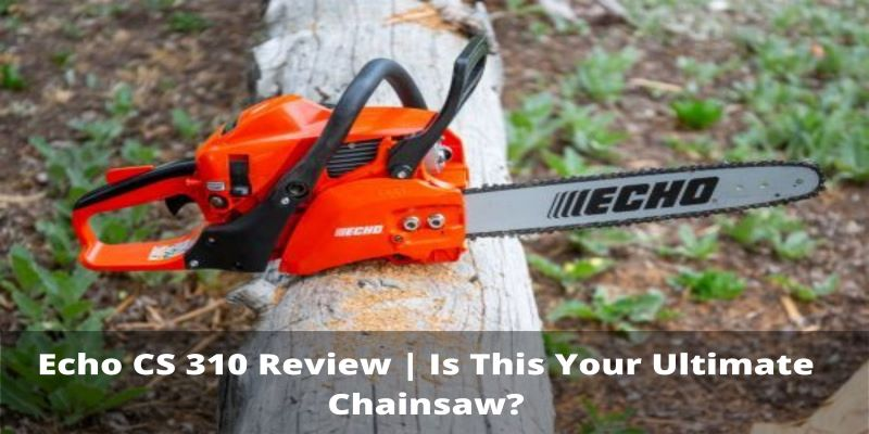 echo cs 310 review